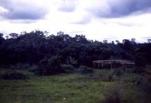 1999-2002 // Eyala Pena itinerant theater // Douala - Cameroon