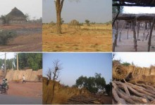 Notes pour un projet au Niger // 2005