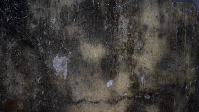 Murs à Conakry